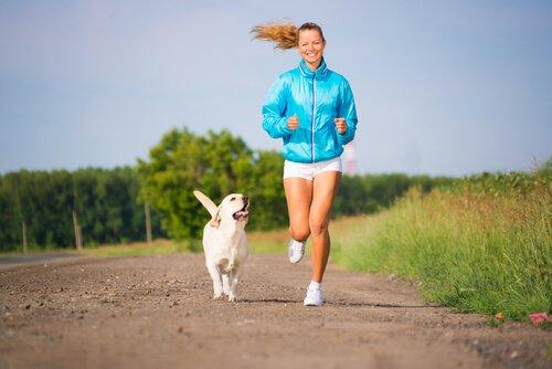 10 consejos para correr con tu perro