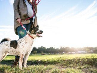padrona che porta a spasso il cane